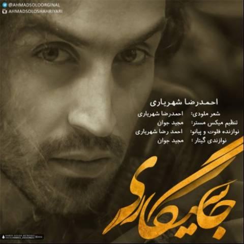 987451321687ahmadreza-shahriyari-ja-sigari
