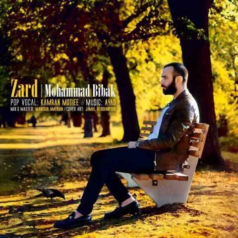 دانلود آهنگ محمد بی باک به نام زرد
